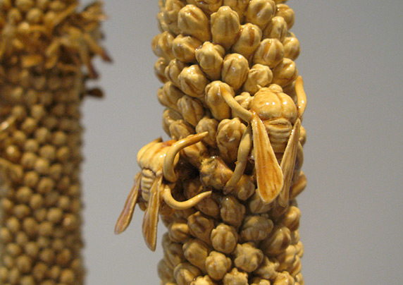 detail of Bees on Mullein